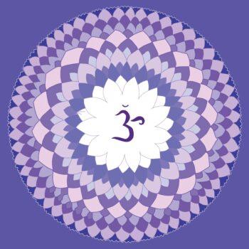 Krone-violet-1340083
