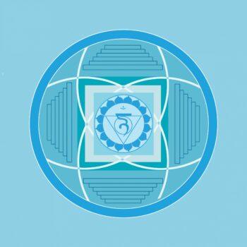 hals-light-blue-1340078