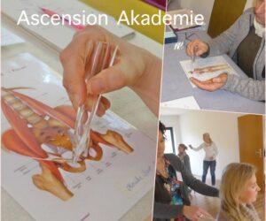 ascension-collage-akademie I